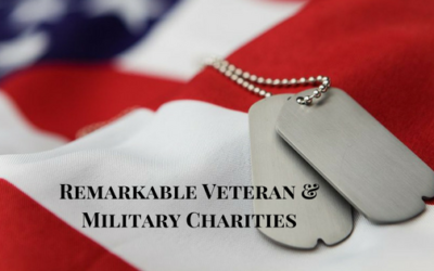 Spotlight on 9 Remarkable Veteran and Military Charities